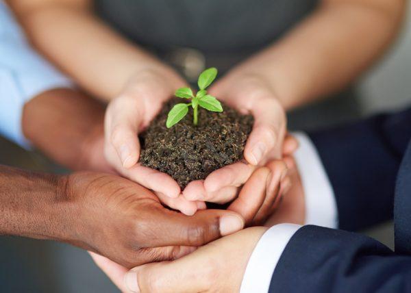 組織再編税制の改正で有望事業の独立を促進